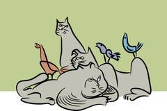 友好的猫和的鸟 免版税库存图片