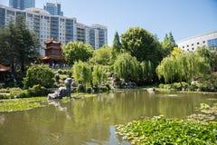 友谊中国庭院与游人的 图库摄影