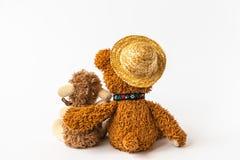 友谊,拿着在它的胳膊的玩具熊长毛绒绵羊,被隔绝 库存图片