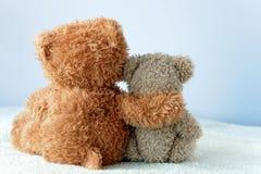 友谊-举行在一个` s胳膊的两个玩具熊 库存图片