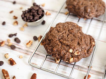 双巧克力曲奇饼 免版税图库摄影