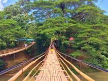 双桥梁 库存图片