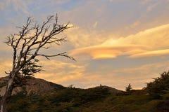 双突透镜的云彩在Parque Nacional Los Glaciares 免版税库存图片