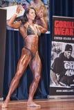 双重二头肌的女性爱好健美者摆在并且染黑比基尼泳装 库存图片