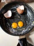 双重卵黄质鸡蛋 库存图片