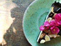 双重巧克力乳酪乳酪蛋糕 图库摄影