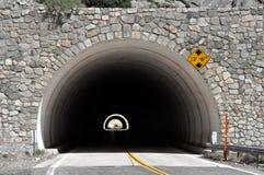 双重隧道 库存图片