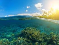 双重seaview 水下的珊瑚礁 在水线上下 免版税库存图片