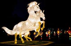 双马在合艾灯节 免版税库存图片