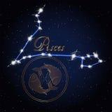 双鱼座黄道带的占星术星座 图库摄影