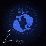 双鱼座黄道带的占星术星座 库存图片