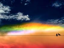 双鸟五颜六色彩虹和日落天空 库存图片