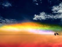 双鸟和五颜六色彩虹日落天空 库存图片