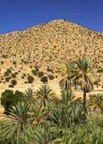 反地图集kasbah摩洛哥山tizourgane 库存照片