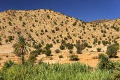 反地图集kasbah摩洛哥山tizourgane 免版税库存照片