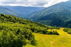 反对一个大山谷和多云灰色天空的背景的一块晴朗的森林沼地 免版税库存图片