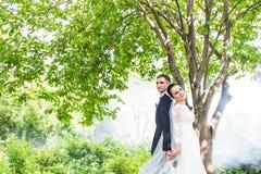 反对一个有薄雾的庭院的背景的婚礼夫妇 免版税库存照片