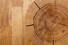 反对一个木地板的日志核心 顶视图 特写镜头 抽象多孔黏土背景颜色grunge照片rgb生锈的系列空间纹理 免版税库存照片