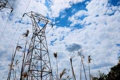 反对云彩和蓝天的电能线 免版税图库摄影