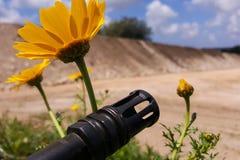 反对五颜六色的花的武器,选择在和平或战争之间 概念:停止冲突,感觉世界秀丽 库存照片