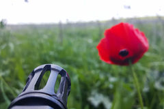 反对五颜六色的花的武器,选择在和平或战争之间 概念:停止冲突,感觉世界秀丽 免版税库存照片