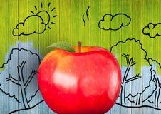 反对五颜六色的被绘的木头的苹果与自然图画 库存图片