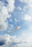 反对充分蓝天的白色风筝飞行云彩 垂直的图象 免版税库存照片