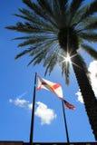 反对光的旗子 免版税库存照片