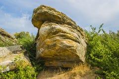 反对天空和树的一块巨大的石头 免版税库存图片