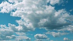 反对天空蔚蓝的卷曲的积云 影视素材