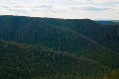 反对天空蔚蓝的美丽的绿色森林与云彩 自然公园 免版税图库摄影