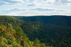 反对天空蔚蓝的美丽的绿色森林与云彩 自然公园 库存照片