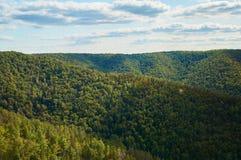 反对天空蔚蓝的美丽的绿色森林与云彩 自然公园 免版税库存图片