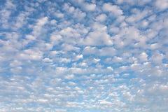 反对天空蔚蓝cloudscape背景样式的卷积云 免版税库存照片