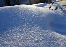 反对太阳和蓝色阴影的新鲜的雪 免版税库存照片