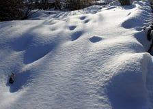 反对太阳的新鲜的雪与从脚印的蓝色阴影 免版税库存照片