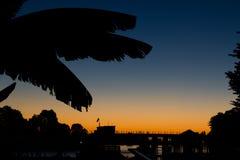 反对太阳集合天空背景的芭叶子剪影  免版税图库摄影