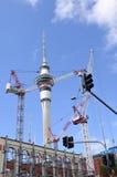 反对奥克兰天空塔的许多起重机 免版税图库摄影