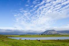 反对山背景,冰岛,好夏天的美丽的湖 免版税库存照片