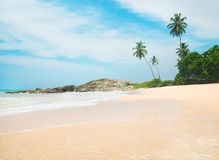 反对岩石的海洋海滩和棕榈在晴天 库存照片