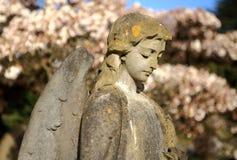 反对开花的树的石天使 免版税库存图片