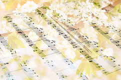 反对开花的树背景的音乐纸张 库存照片