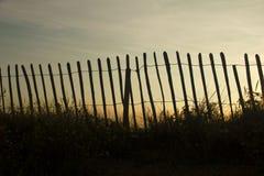反对日落的现出轮廓的篱芭 免版税库存图片