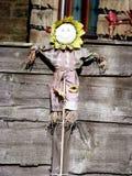 反对木背景的向日葵玩具在庭院里 图库摄影