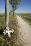 反对树的十字架 免版税库存照片