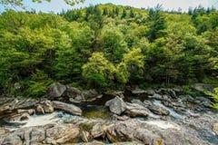 反对树的Linville河 免版税库存照片