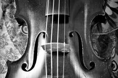 反对样式的古色古香的小提琴特写镜头,单色 图库摄影