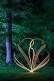 反对森林背景的轻的绘画 库存照片