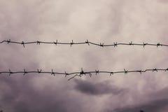 反对灰色天空的铁丝网 库存图片