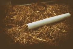 反对烟草背景的一根滚动的香烟  免版税库存图片